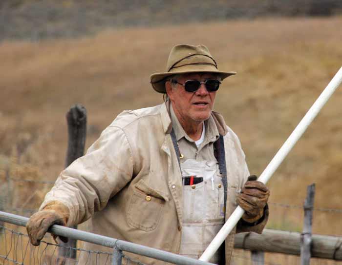Joe Sperry, sheep farmer, Colorado