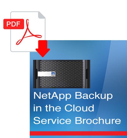 NetApp Backup in the cloud service broucher.png
