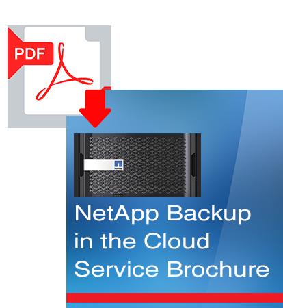 NetApp-Service-Brochure.png