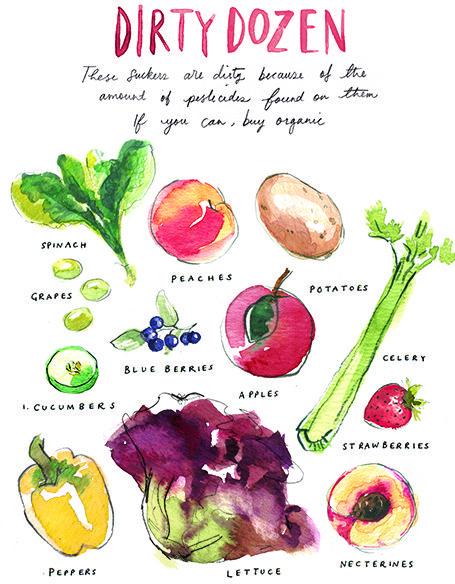 Maison Everett Blog | dirty dozen, buying organic, illustration by petite alma
