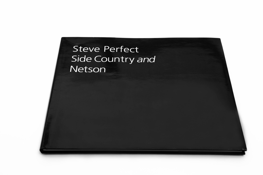 Steve Perfect