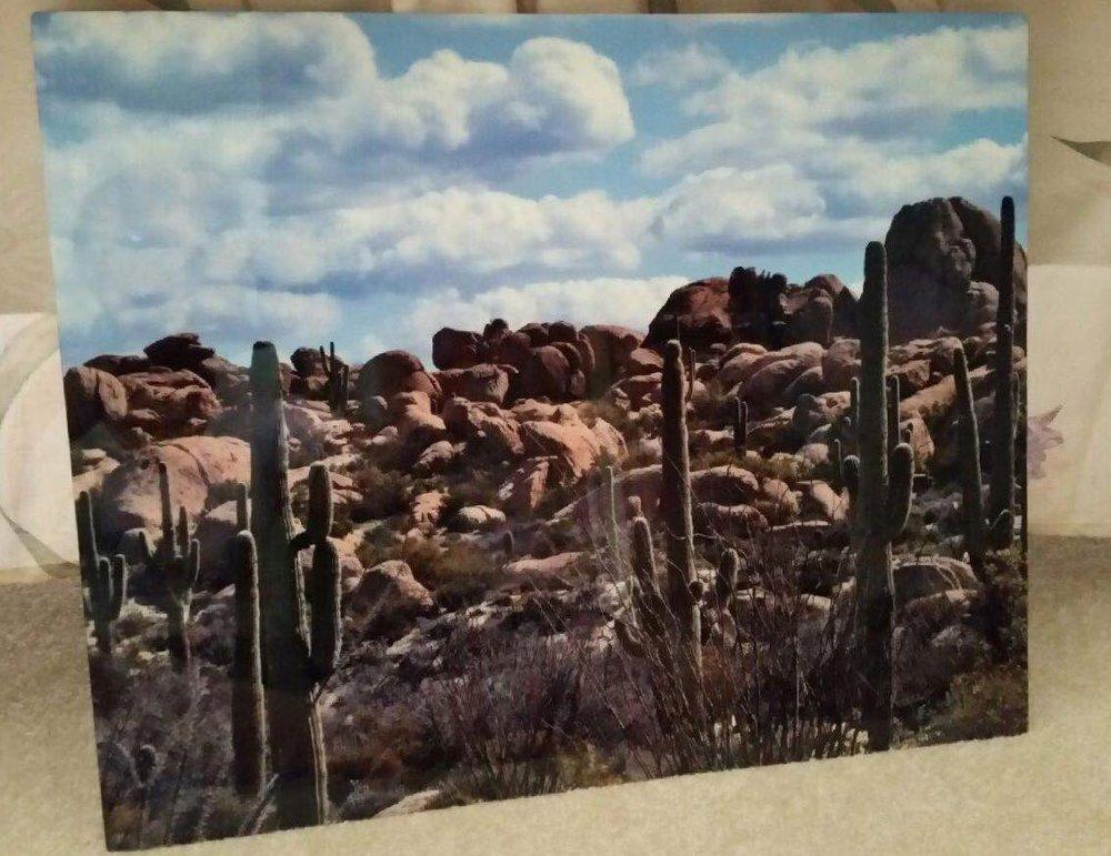 Metal Print -  Desert scene