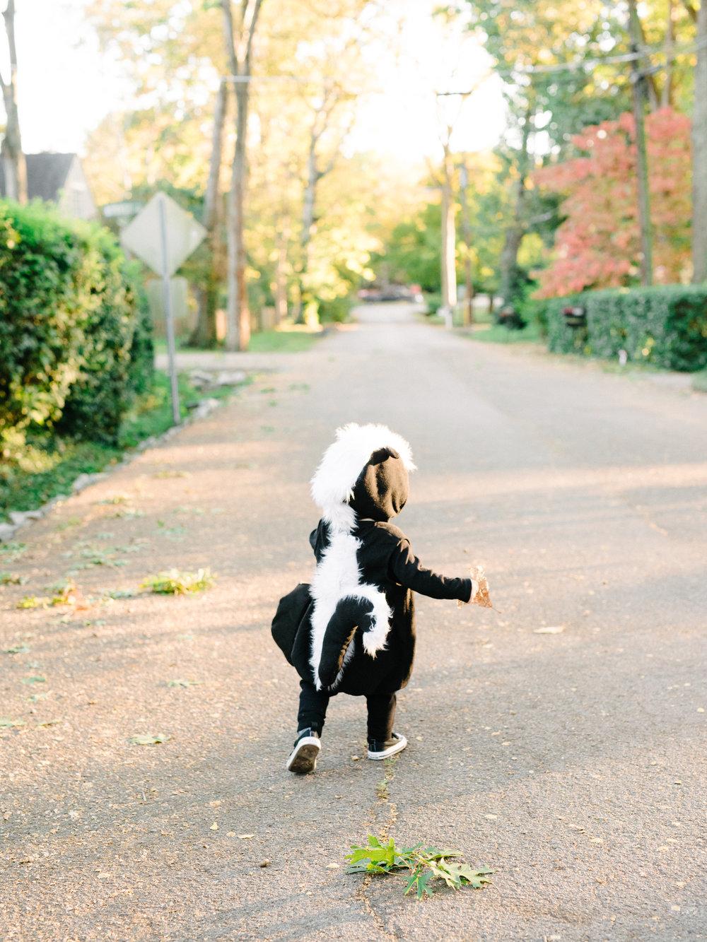 Pottery Barn Kids Skunk Costume