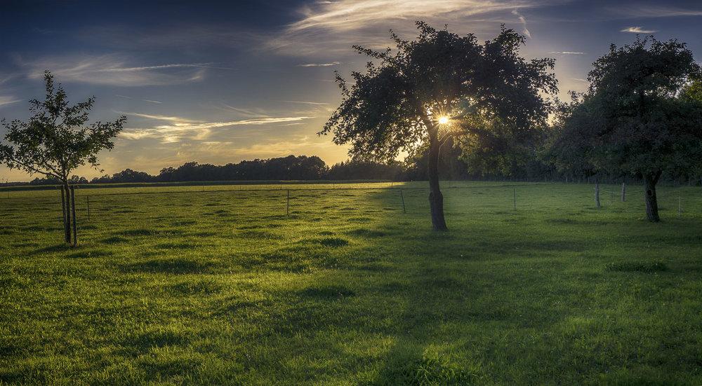 Ostalb_Sonnenuntergang.jpg