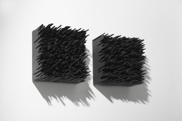 Emilio Chapela   White noise (Digital Analogue)  HDF
