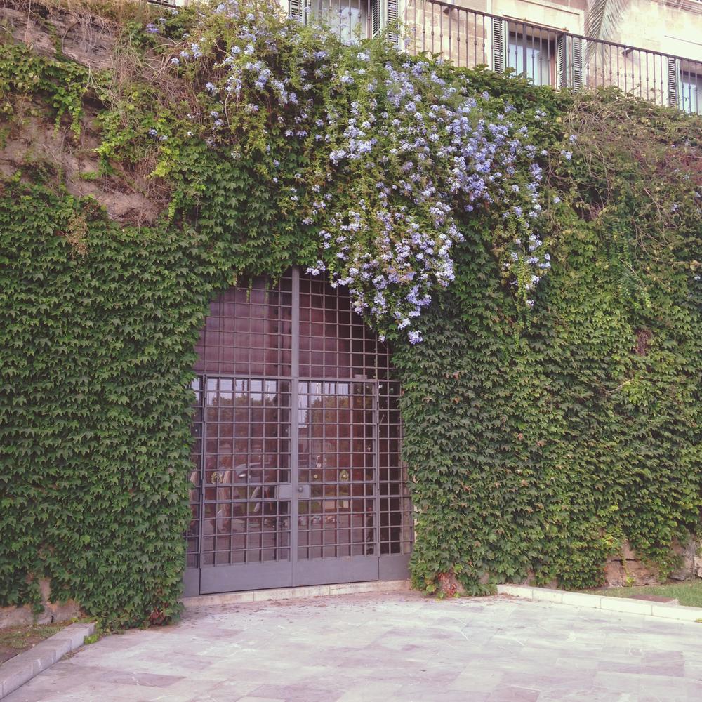 Mateo Prado - Mallorca 207.jpg
