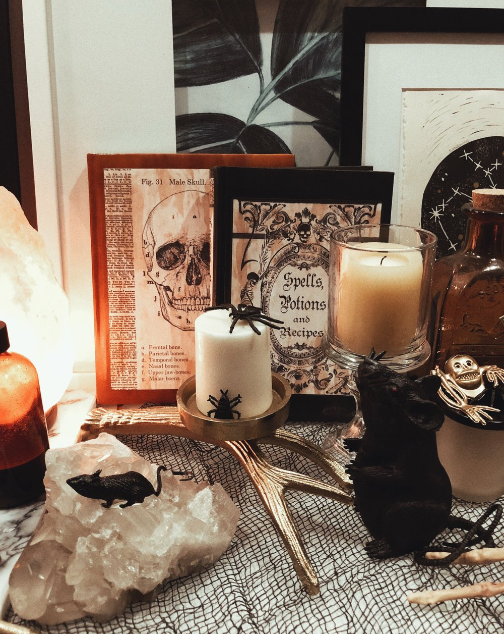 Halloween home decor apothecary creepy chic home interior design.jpg