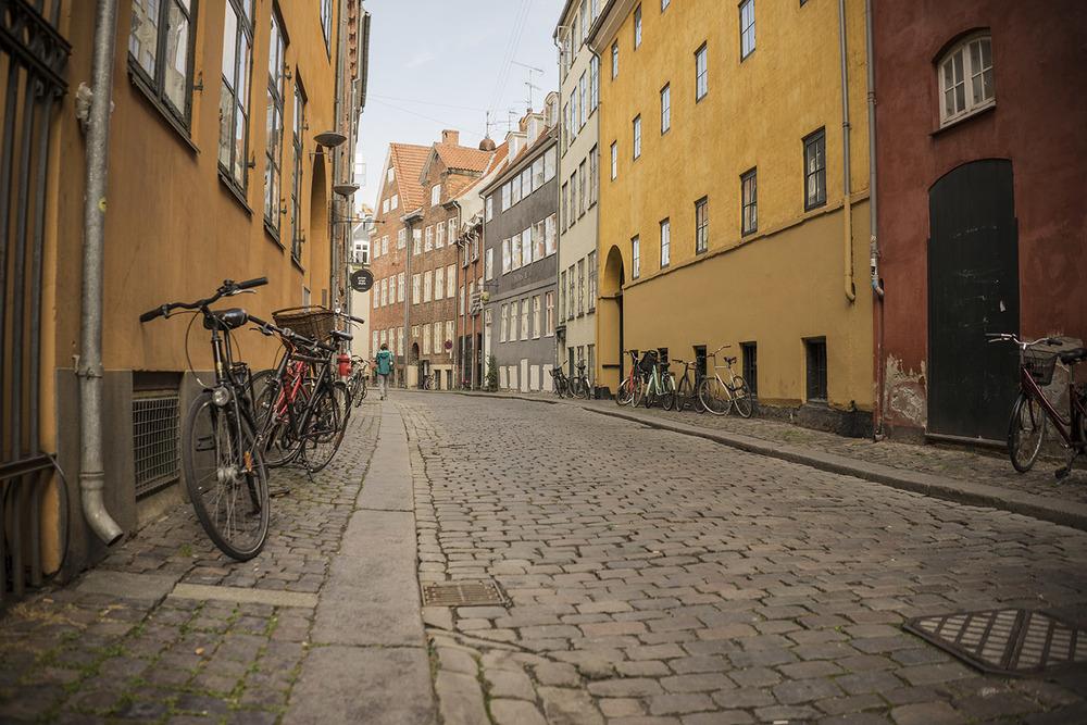 Alley of Copenhagen.jpg