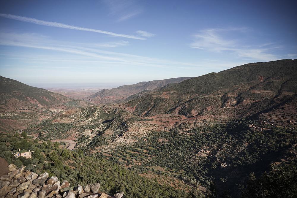 Desert Excursion_0001.jpg