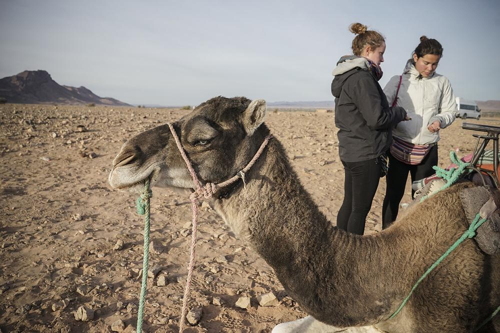 Desert Excursion_0044.jpg
