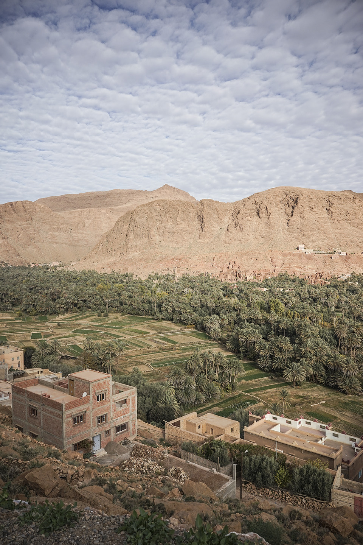 Desert Excursion_0053.jpg