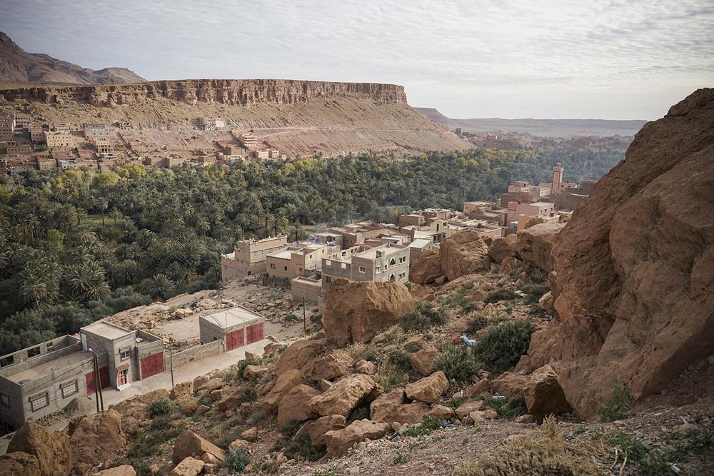 Desert Excursion_0054.jpg