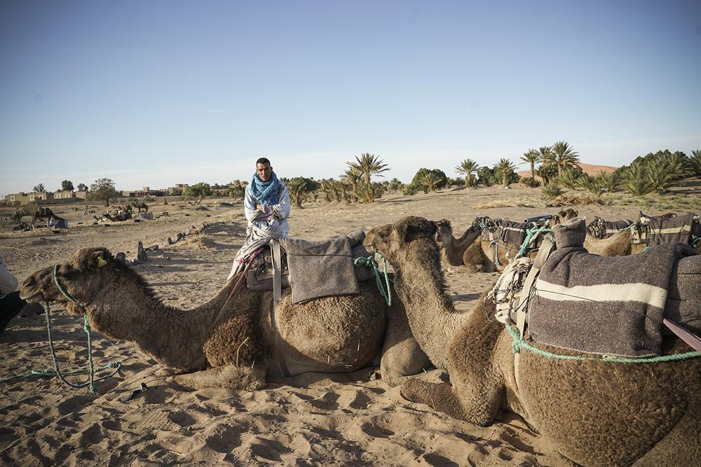 Desert Excursion_0058.jpg