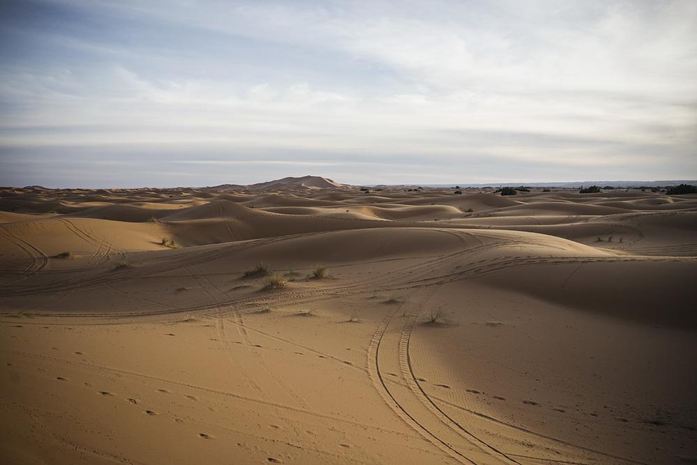 Desert Excursion_0070.jpg