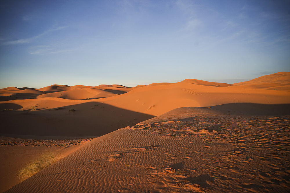 Desert Excursion_0074.jpg