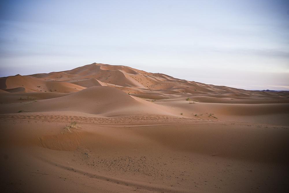 Desert Excursion_0077.jpg