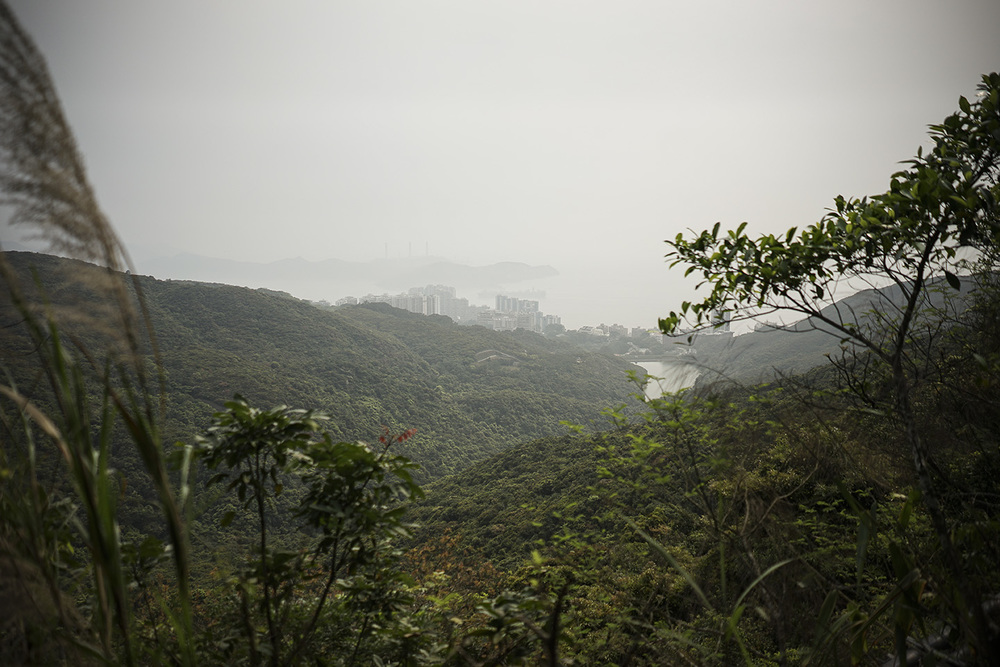 View from Victoria Peak