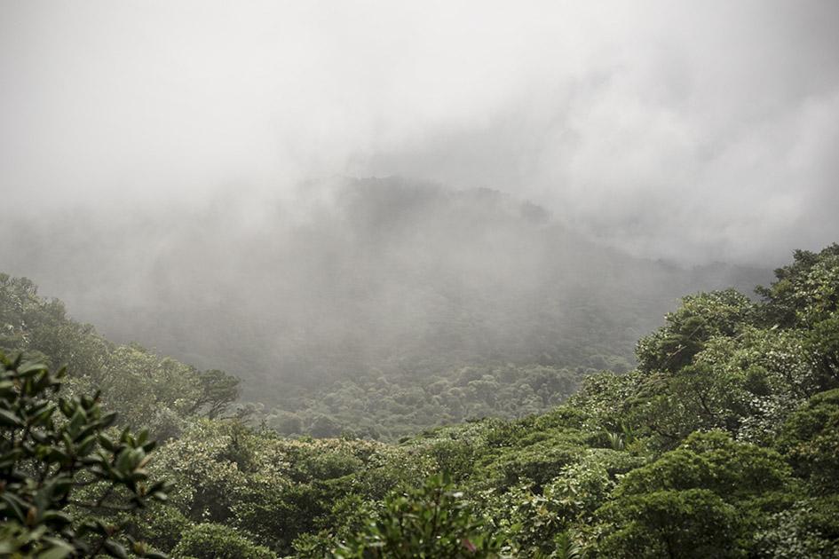 Monteverde_0015.jpg