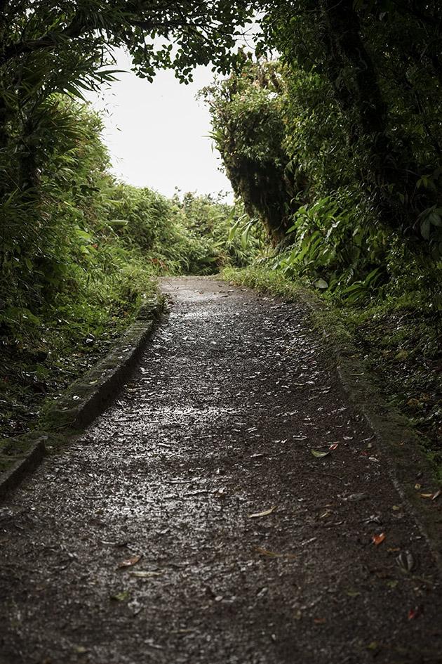 Monteverde_0014.jpg