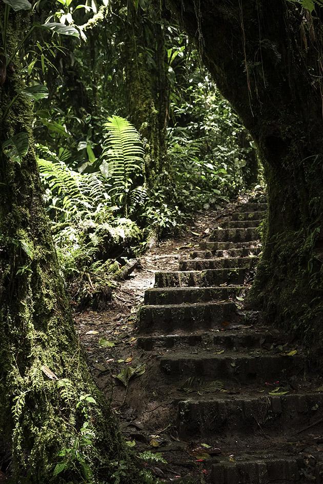 Monteverde_0040.jpg
