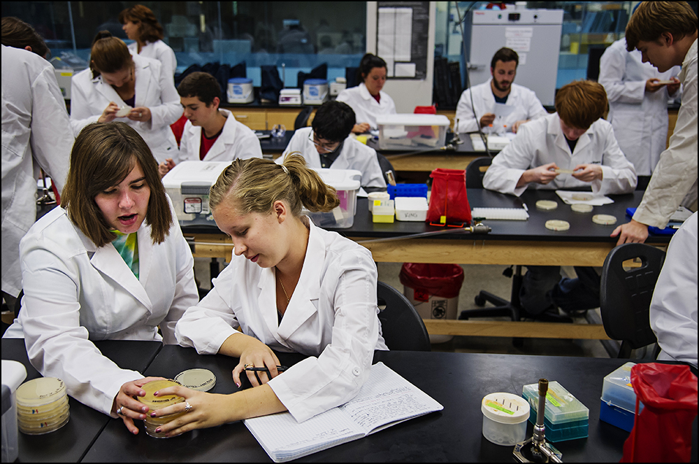 Elizabeth Pulsifer, left, a junior at Gatton Academy from Boone County, Ky., examines a petri dish with Western Kentucky University freshman Emily Noel, right, from Boone Countym Ky., on Tuesday, September 9, 2014. The class, Genome Discovery and Explorations, puts students at Gatton in the same classroom as students at WKU. By Brian Powers, Special to the CJ, 09/09/2014