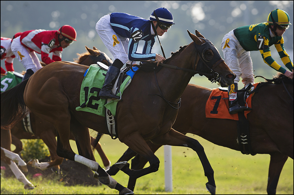 Jockey Chris Landeros, 26, center, from California, rides Cat With a Twist to a fifth place finish at Kentucky Downs race track in Franklin, Ky. on Wednesday, September 10, 2014. By Brian Powers, Special to the CJ, 09/08/2014