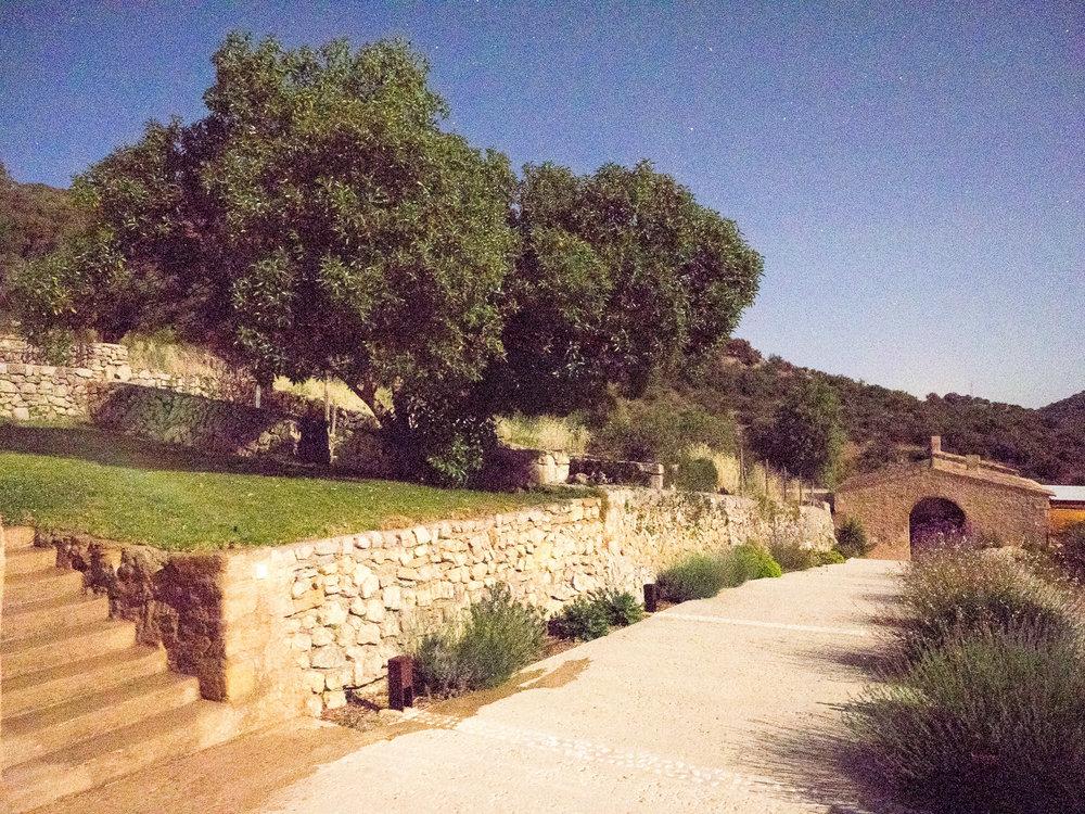 Mallorca_SesVoltes-13.jpg