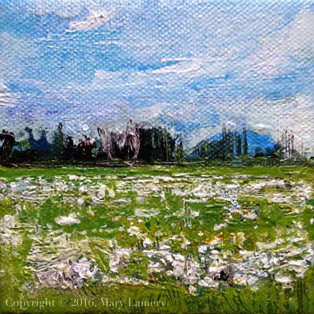 "Work in Progress. Snow Geese, Skagit Valley. 4x4"". Oil on Canvas. 2016"