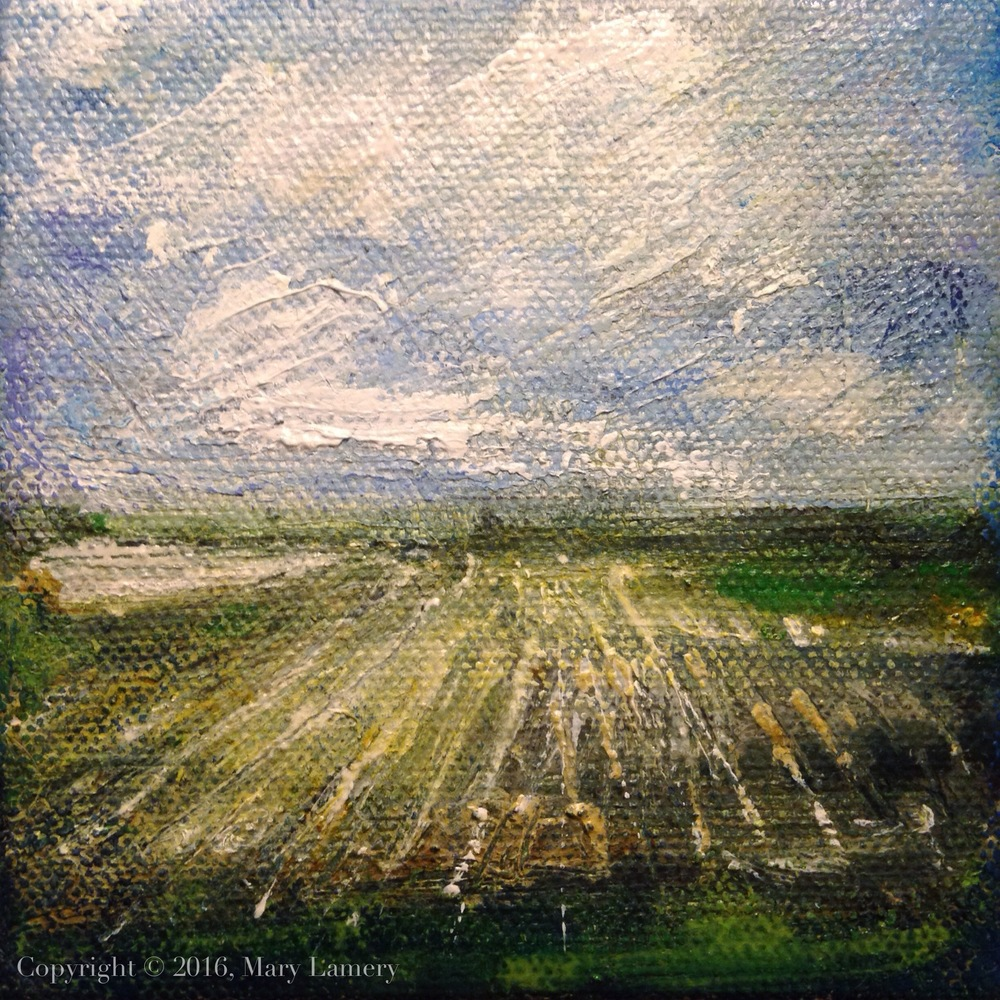 "Farmland. Oil on Canvas, 4x4."" 2016. M. Lamery"