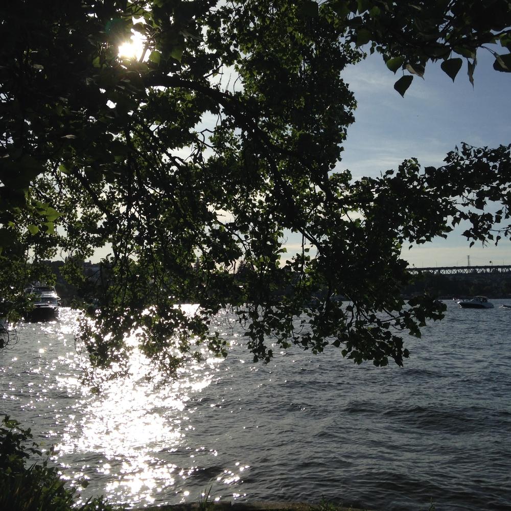 Portage Bay. Montlake Cut connects Portage Bay to Lake Washington.