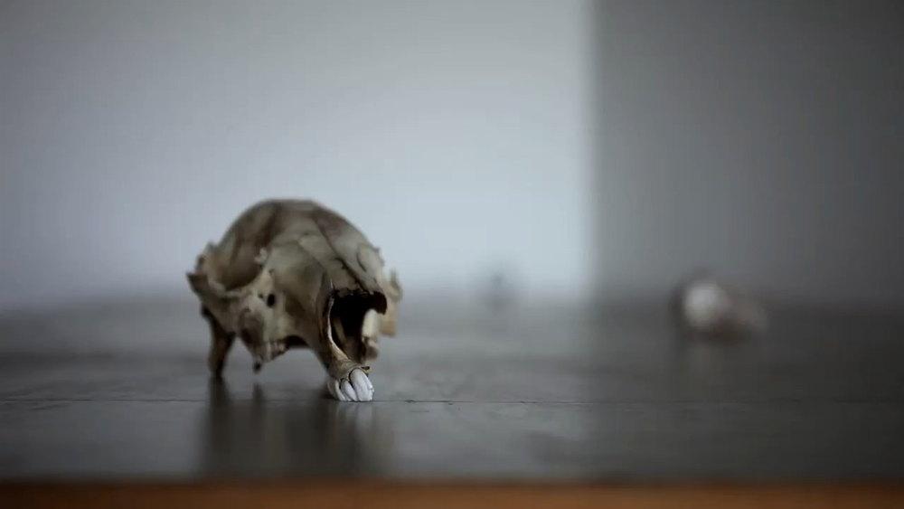 Still from SLV3, video, 10:13, 2013 view at https://vimeo.com/79538717