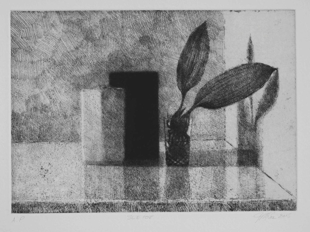 SLE108, 2015, soft ground etching with foul bite on Hahnemühle paper 615mmx 530 (plate 292mm x 208mm).