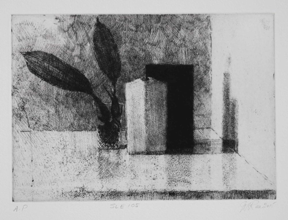 SLE105, 2015, soft ground etching with foul bite on Hahnemühle paper 615mmx 530 (plate 292mm x 208mm).