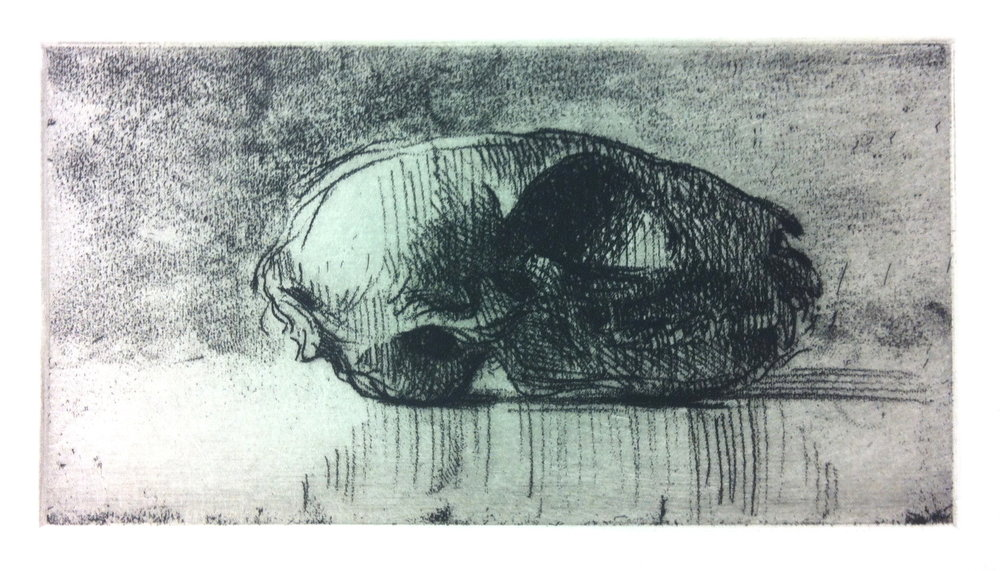 SLE 101 (cat's skull), 2015, soft ground etching on Hahemühle paper, 75 x 145mm, edition of 10