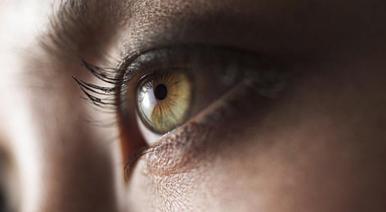 Eye Web.png