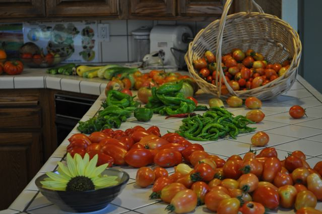 summer morning harvest.jpg