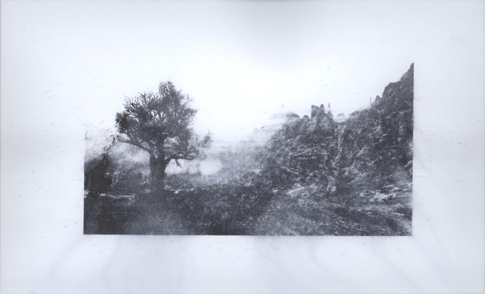 landscape-00018.jpg