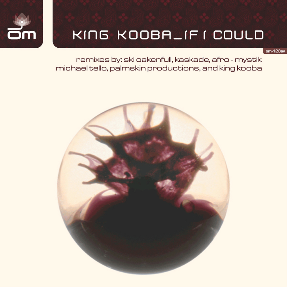 King Kooba - If I Could