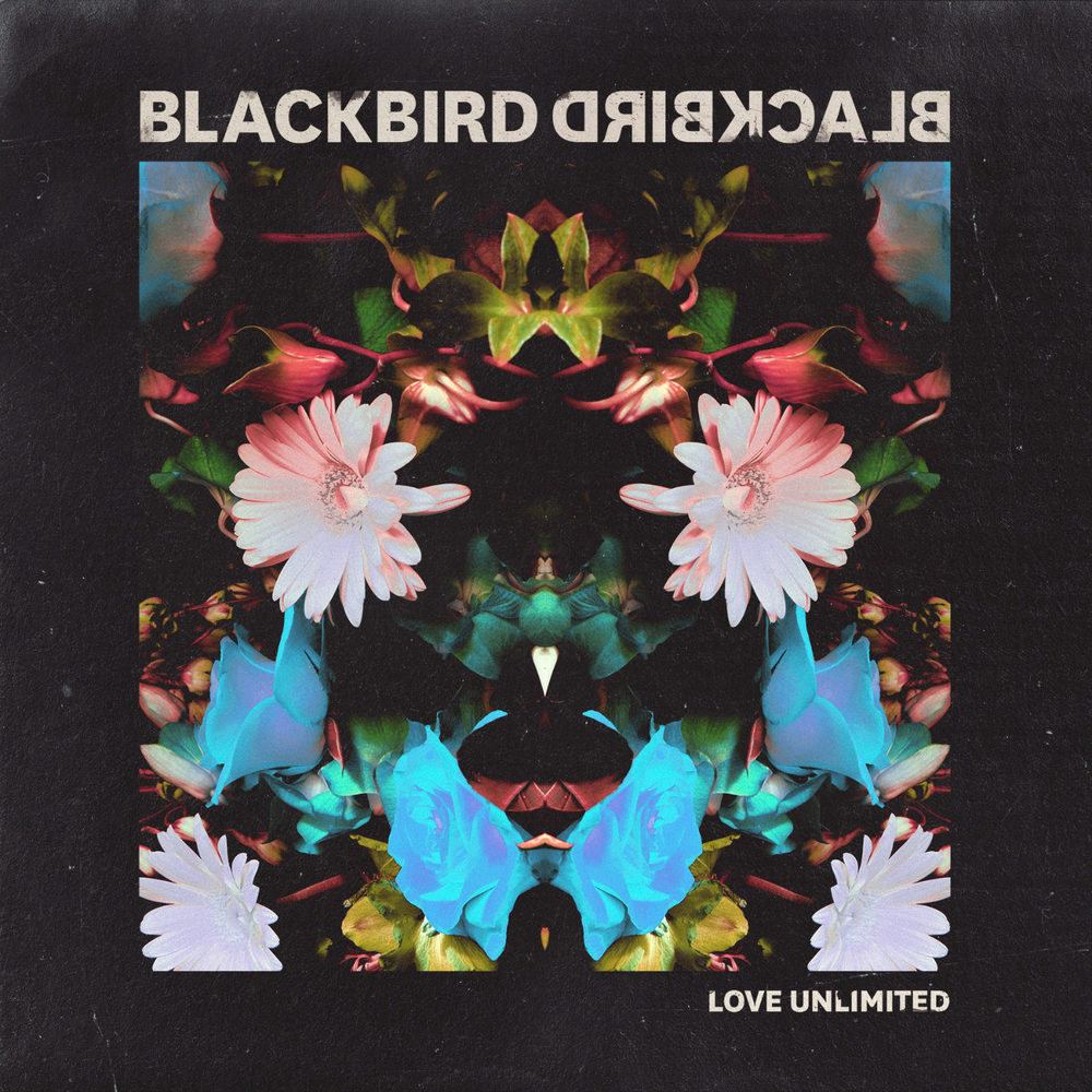 Blackbird Blackbird - Love Unlimited (Single)