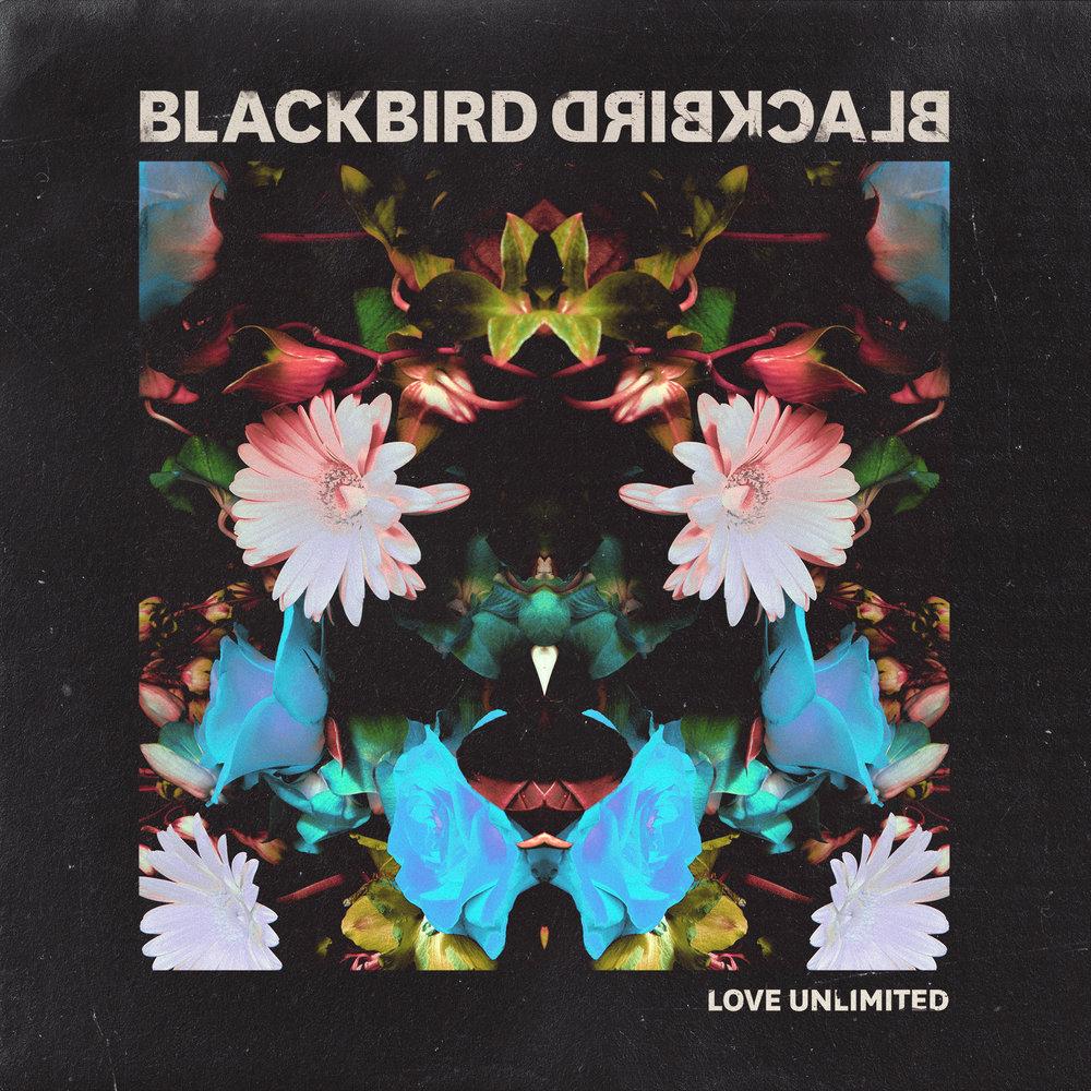 Blackbird Blackbird - Love Unlimited (Single)