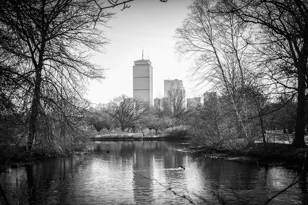 Boston12.jpg