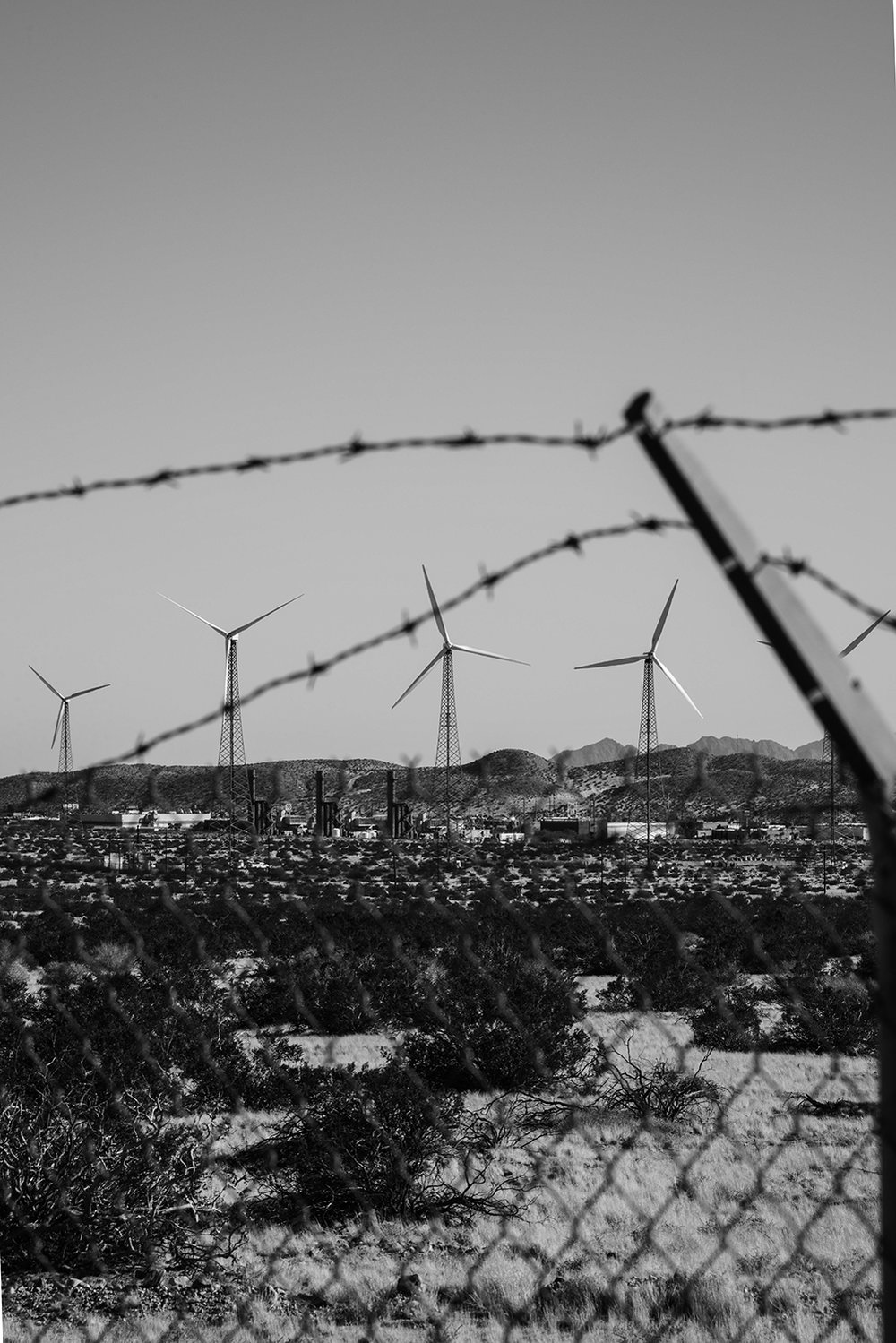 Wind_13.jpg