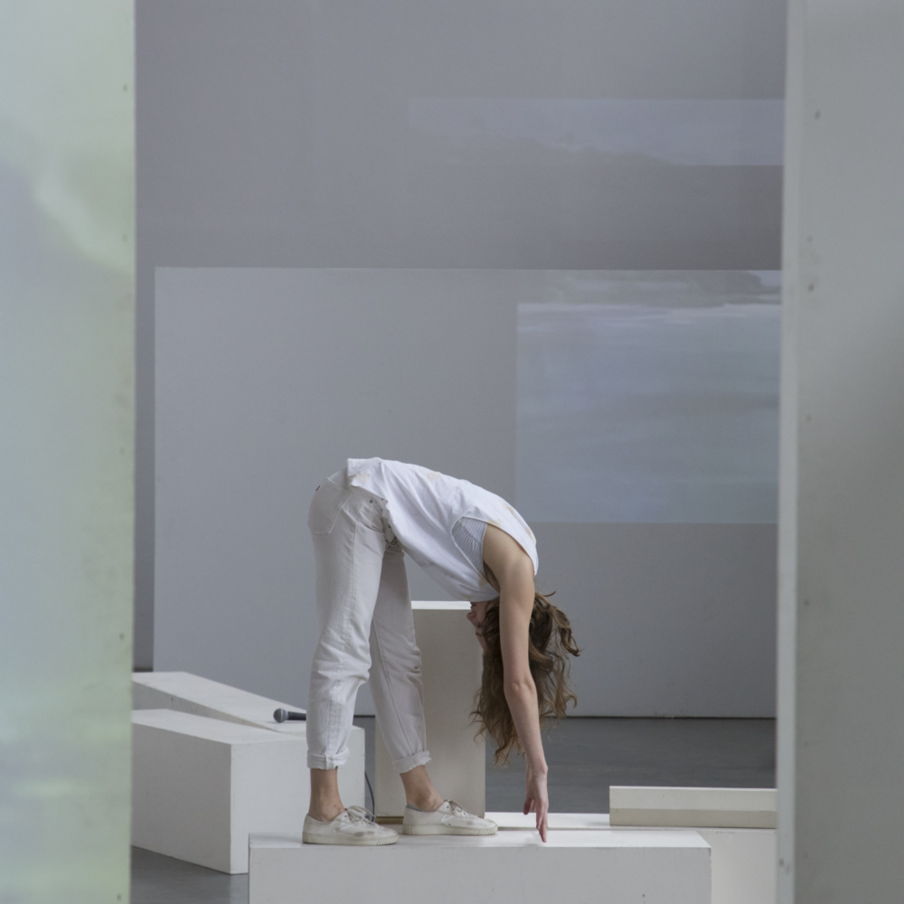 Photo: Performance view of Living Room Index and Pool, Lauren Bakst and Yuri Masnyj, 2015.