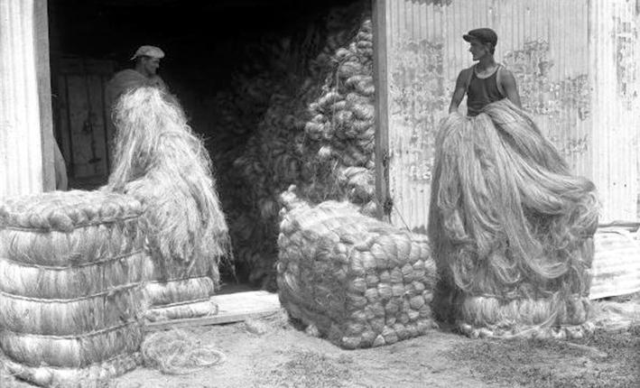 CABAL_ropeworks_Bailing hanks of flax fibr .jpg