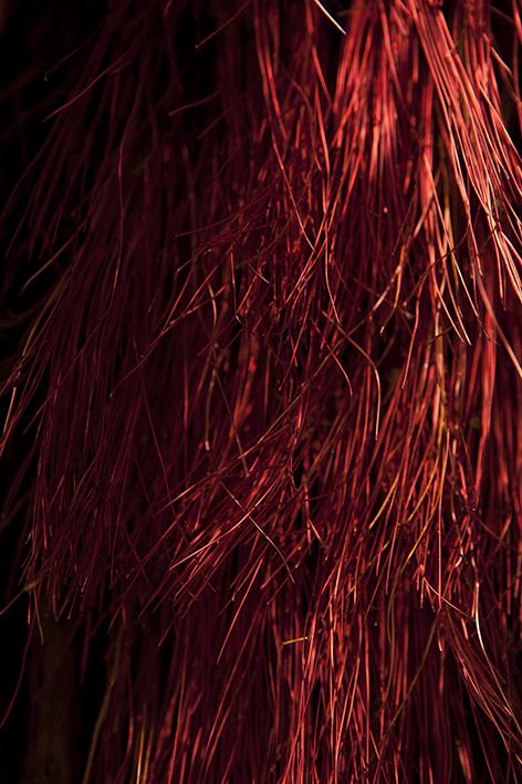 CABAL_Vesta's Sacred Flame_P6265.jpg