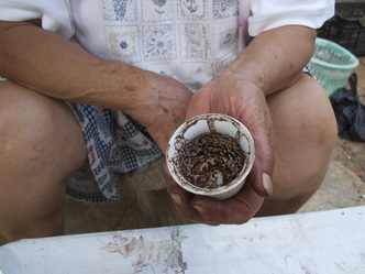 My Great-Aunt doing a coffee cup divination in her village home in South Lebanon.