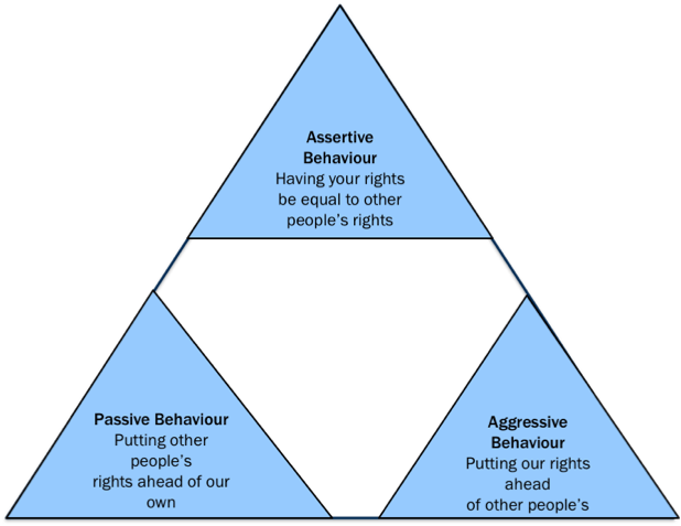 Assertion Triangle