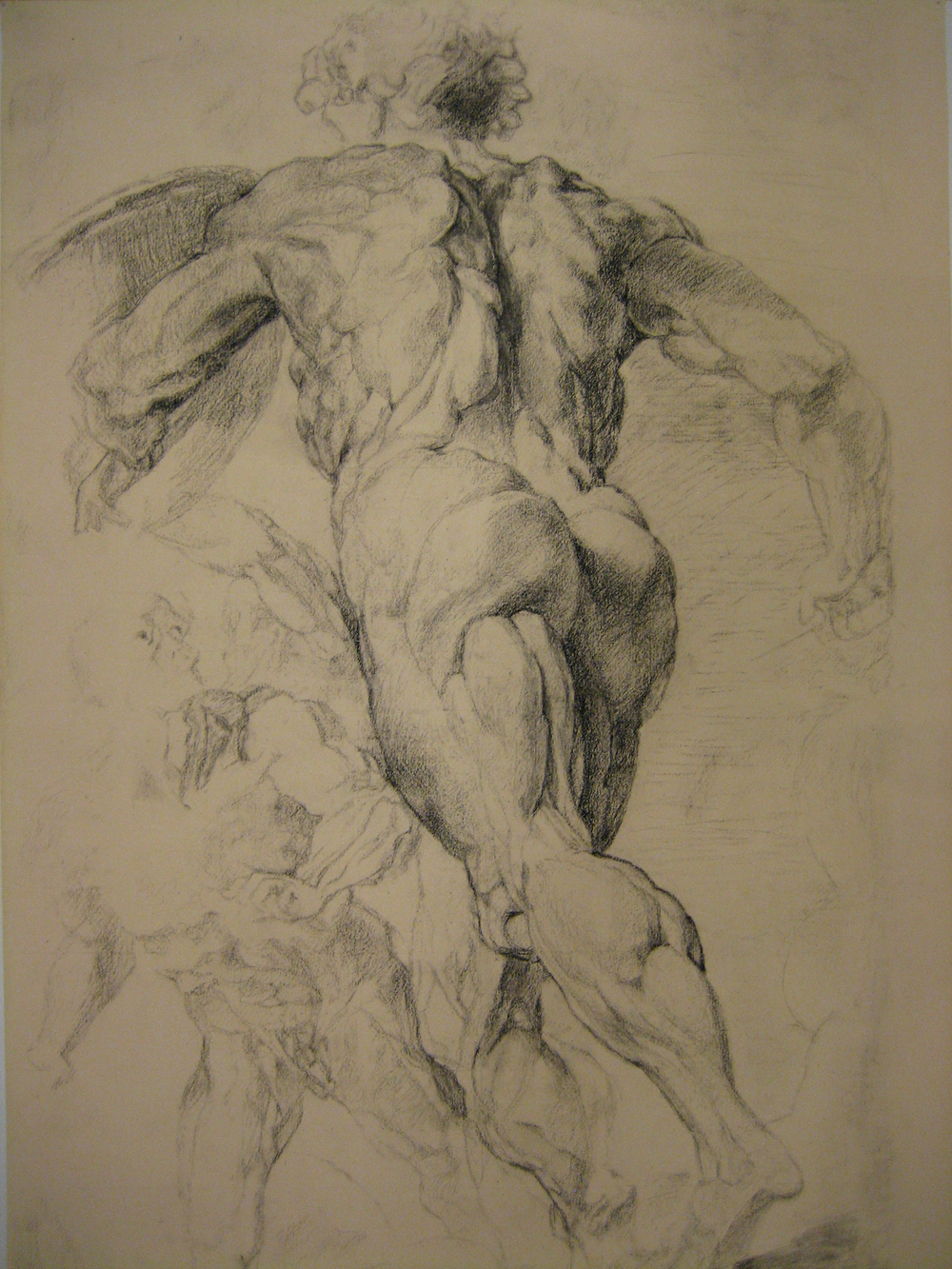 "Rubens Master Copy    Charcoal   18""x24"""