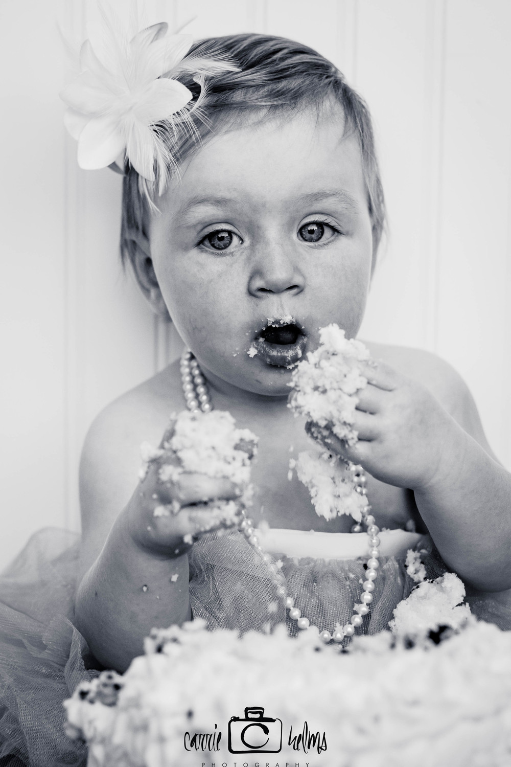 Greensboro North Carolina Cake Smash Childrens Photographer