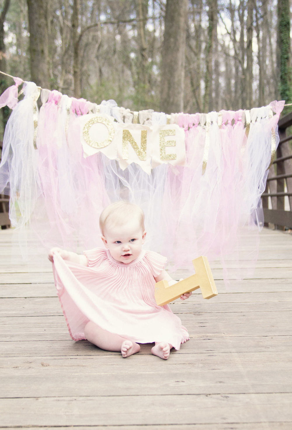greensboro-nc-childrens-photographer-first-birthday-milestone1.jpg